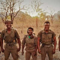 Gemfields Forms Long-Term Partnership With Mozambique Wildlife Conservancy